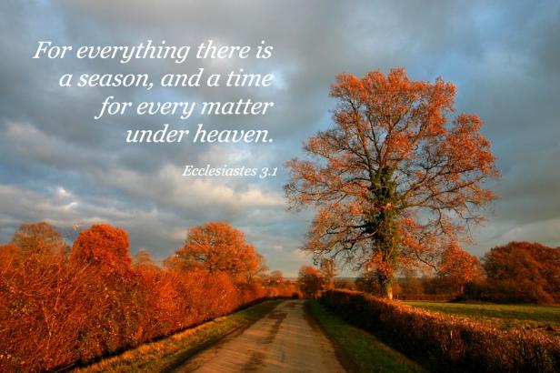 Ecclesiastes3_1
