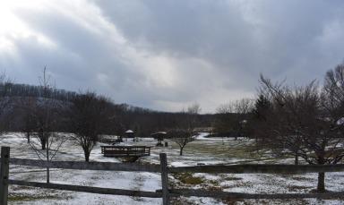 December 2017 Virginia Pigeon Forge Animals 115