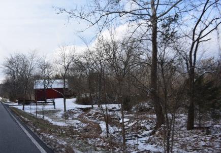 December 2017 Virginia Pigeon Forge Animals 185