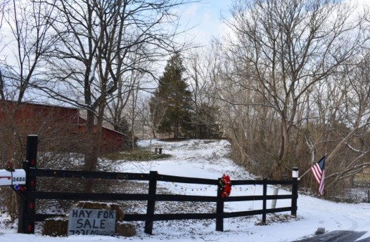 December 2017 Virginia Pigeon Forge Animals 188