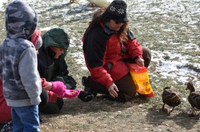 December 2017 Virginia Pigeon Forge Animals 652