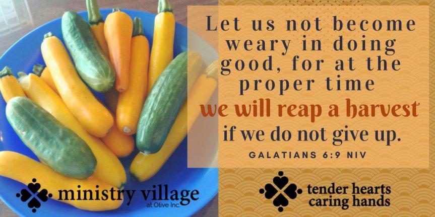 ministry village