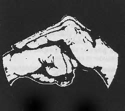 hand covering a fist